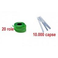 20 de role + 10.000 capse